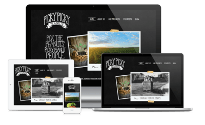 picky picky peanuts web design desktop laptop ipad iphone